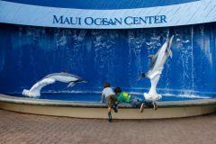 Maui_Ocean_Center-025433