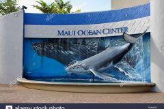Maui_Ocean_Center-025436