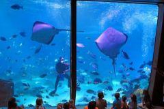 Maui_Ocean_Center-025446