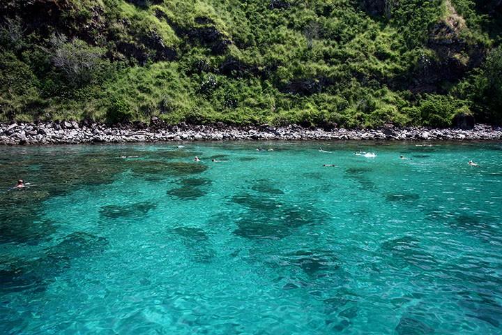 honolua bay maui 043 - Honolua Bay: One of Maui's Best Snorkeling and Surfing Spots