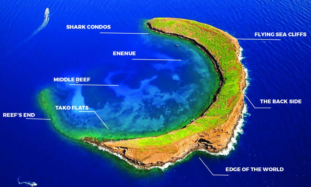 Molokini Crater Maui 057